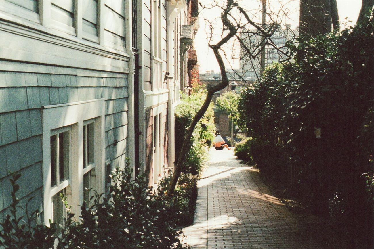 Sunbather @ Cottage Row Western Addition San Francisco (Fujifilm Superia 400)