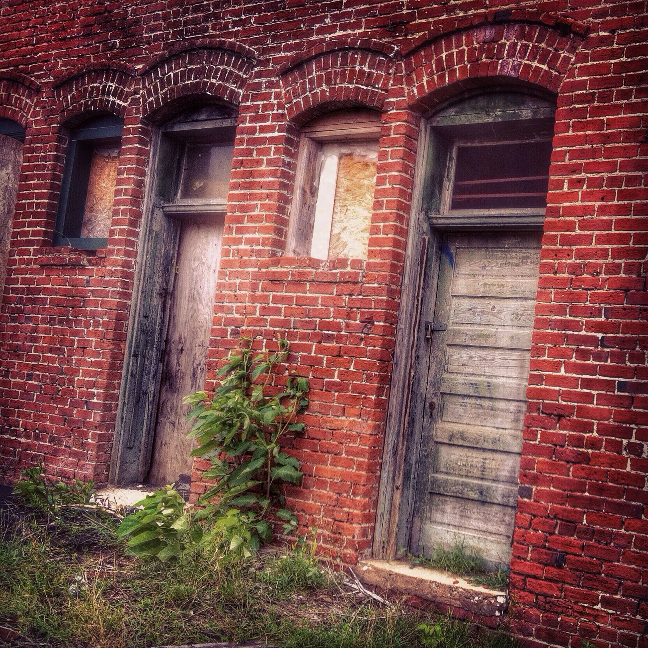 building exterior, architecture, built structure, window, brick wall, house, old, door, wall - building feature, red, weathered, residential structure, abandoned, closed, day, wall, plant, outdoors, stone wall, building