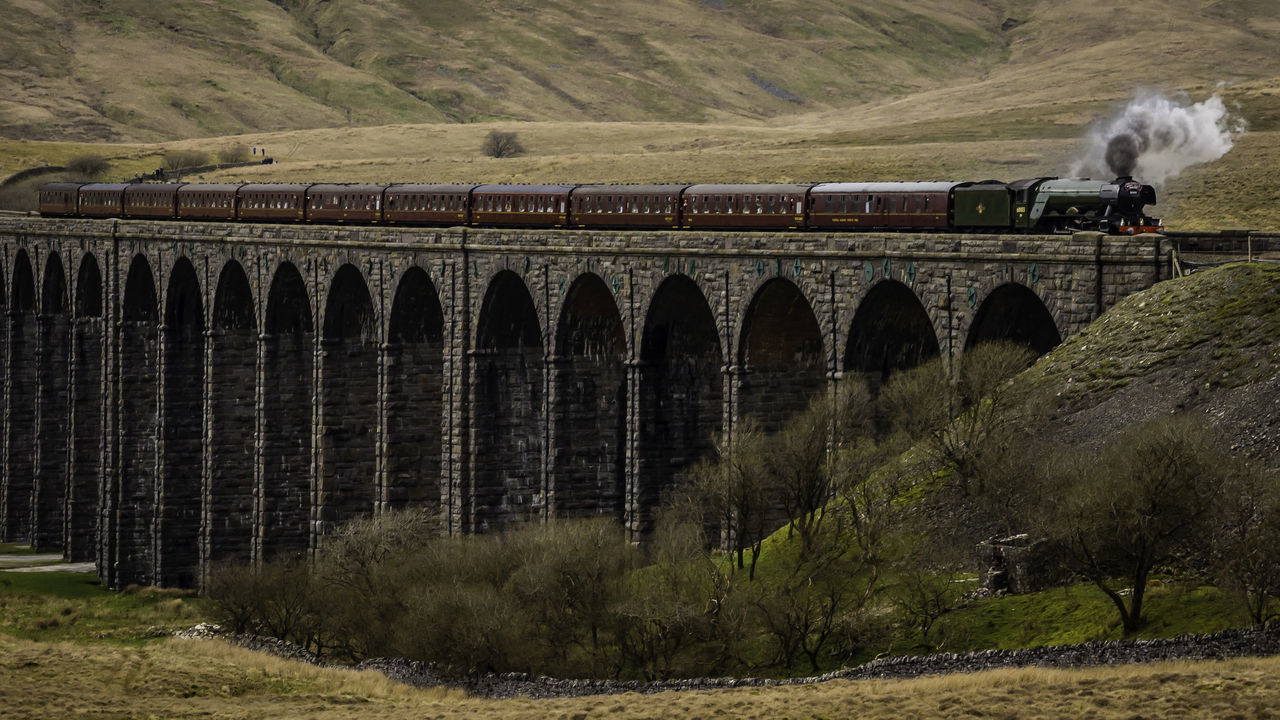 Flying Scotsman on Ribblehead Viaduct Arch Architecture Beauty In Nature Bridge - Man Made Structure Built Structure Day Landscape Nature No People Outdoors Scenics Tree