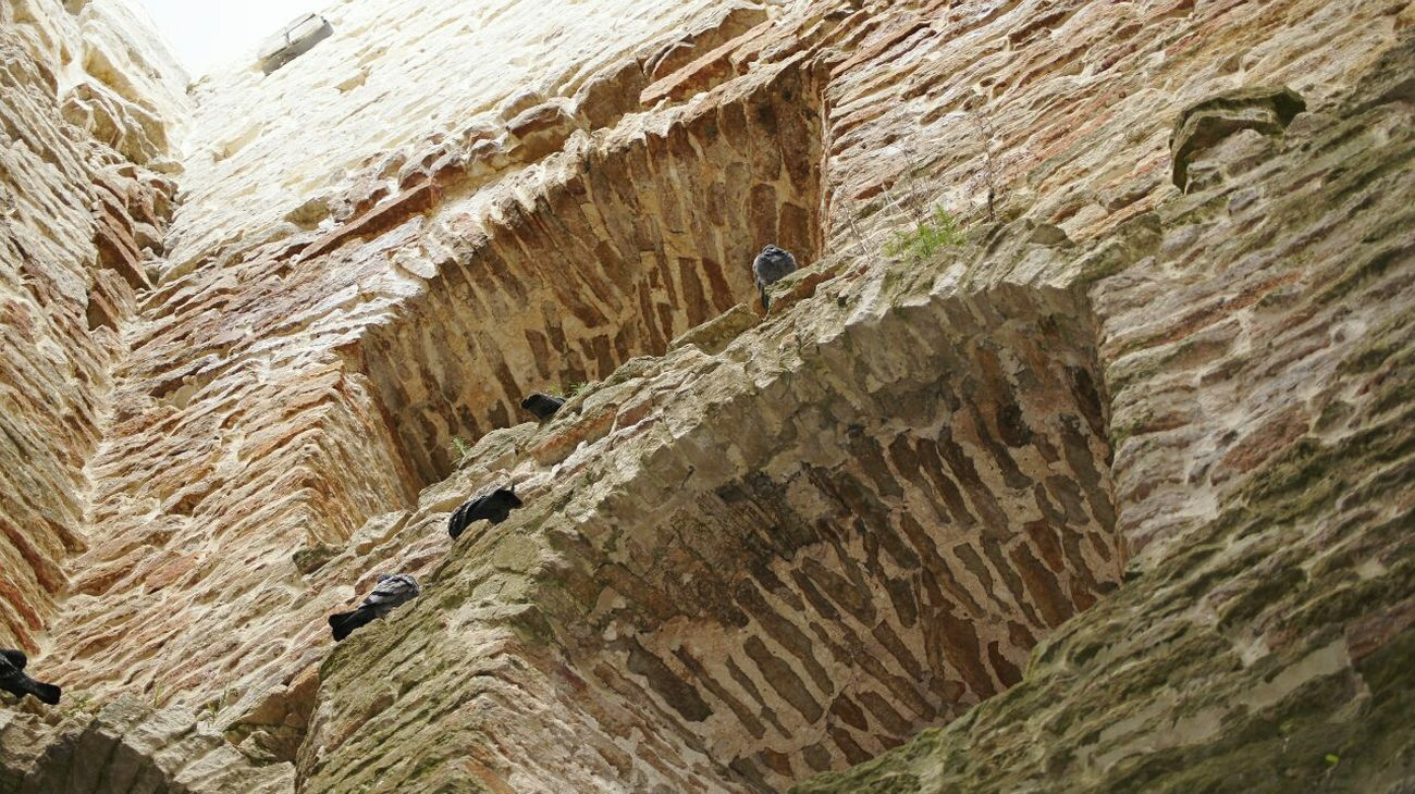 Pskov Izborsk No People Architecture Day Ancient Civilization Tower History Old Ruin