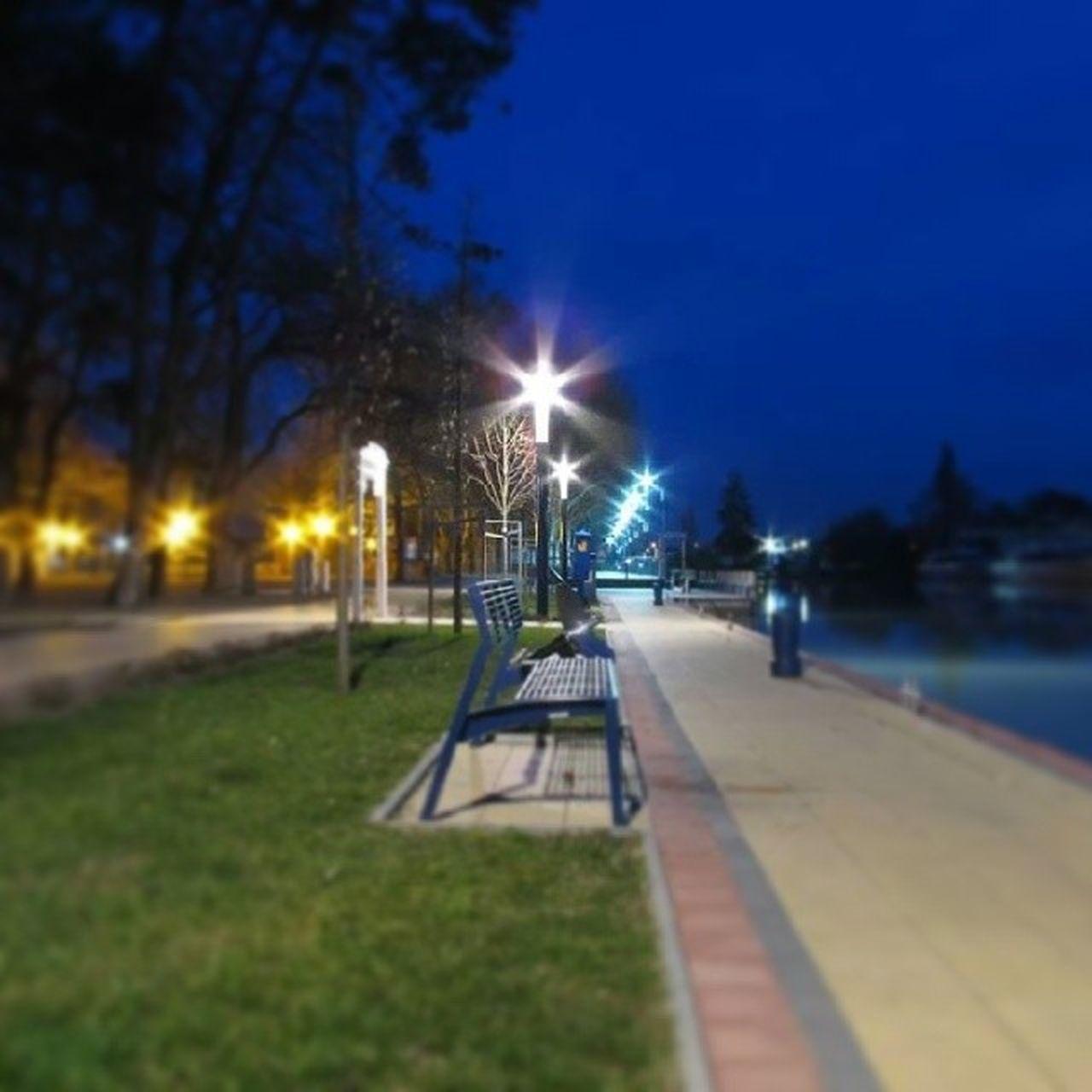 illuminated, night, lighting equipment, street light, outdoors, no people, tree, built structure, sky, grass, architecture, city, nature, building exterior