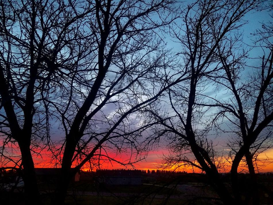 April 1 did not fool us with this beautiful sunrise❤❤❤ Minnesota Sunrise Vivid Colors Sillouette Fireinthesky Mysky Myview Country CountryLivinG Livelaughlove♡ Tranquility Through My Eyes