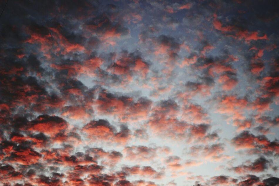 Sky Only Sky Orange Color Nature Cloud - Sky Cloudscape Dramatic Sky Day Vibrant Color Atmospheric Mood Nature Polotsk Belarus