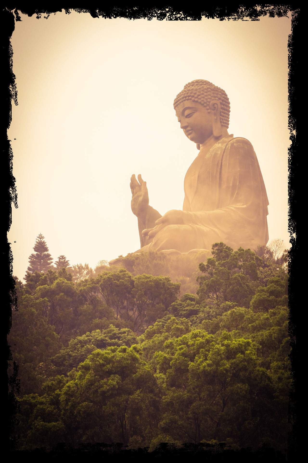 Big Buddha Over The Trees