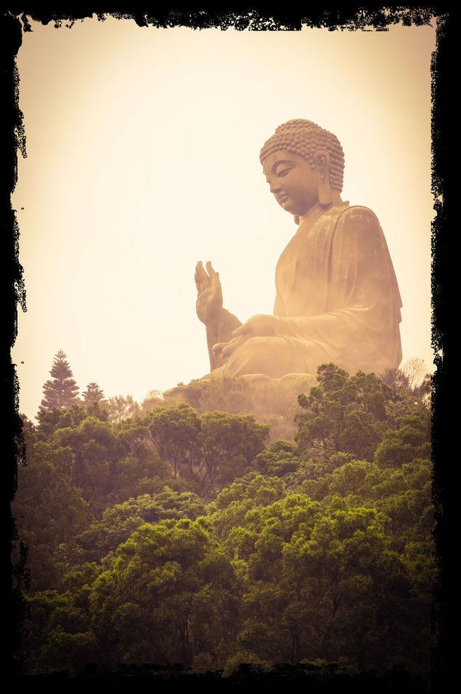 Big Buddha Over The Trees