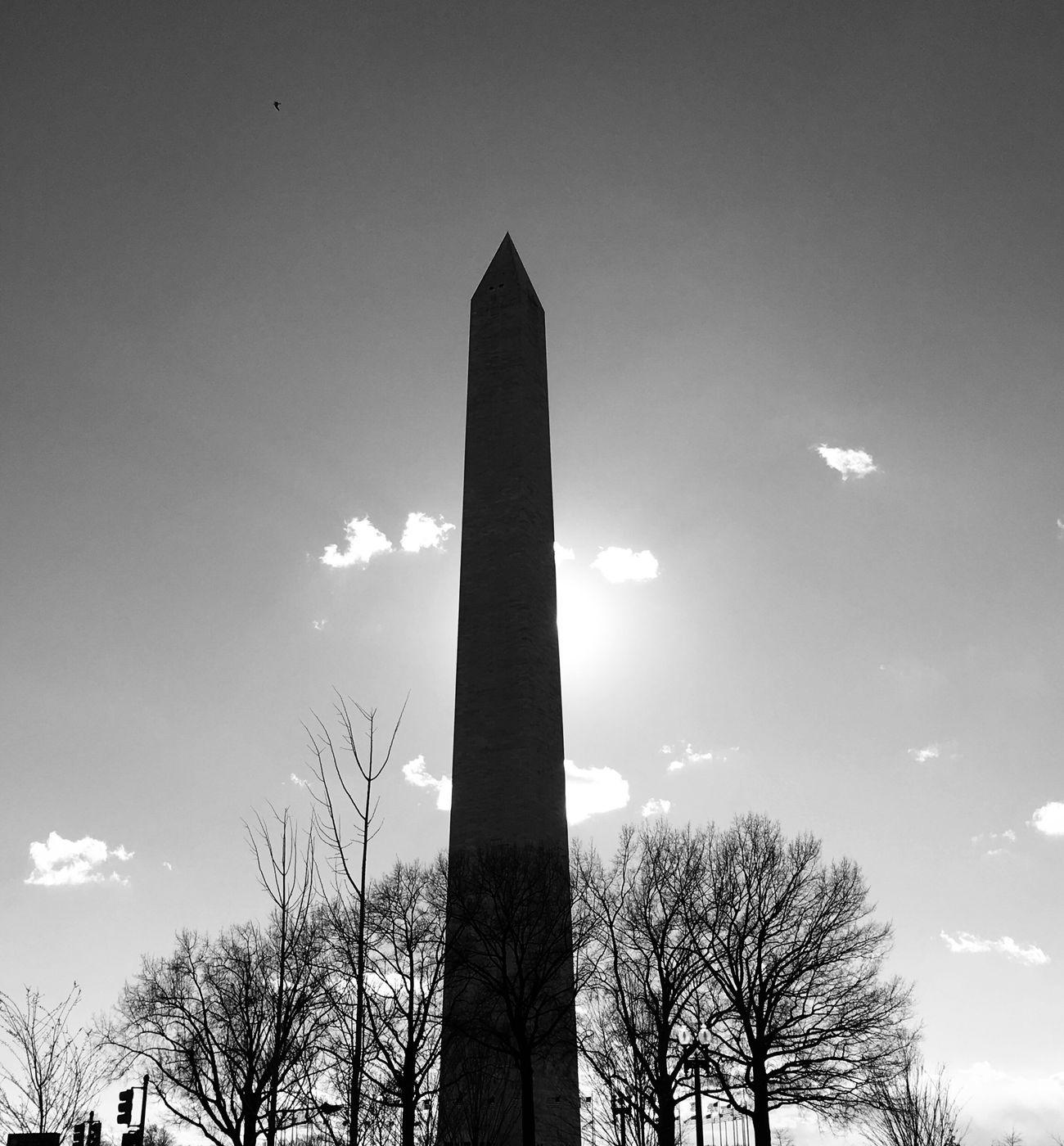 Monument Architecture Sky Blackandwhite EyeEm Best Shots - Black + White Streetphoto_bw Streetphotography The City Light Trees