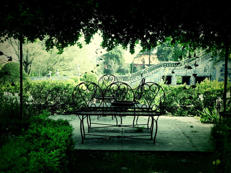 Afternoon Garden Green Portugal Silence Terrace Tranquility Siesta No People Timegoesby Day Plant Lisbon, Portugal