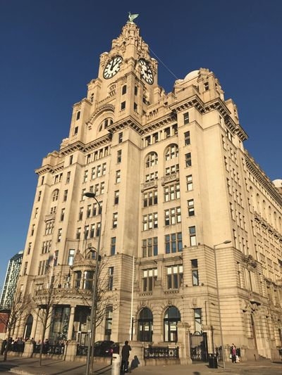 Liverpool Liver Building Architecture Home Is Where The Art Is