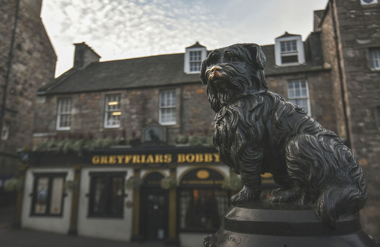 Greyfriars Bobby was a Skye Terrier which became known in 19th-century Edinburgh for supposedly spending 14 years guarding the grave of its owner until it died itself on 14 January 1872. Edinburgh Greyfriars Greyfriars Bobby Greyfriarsbobby History Keith Morgan Scotland Scotland 💕 Sculpture Statue