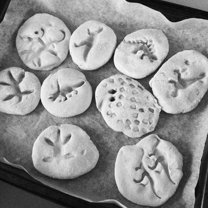 Dinosaur Fossil Kids Children Fun EyeEm Best Shots Salt Dough Saltdough FootPrint Baking