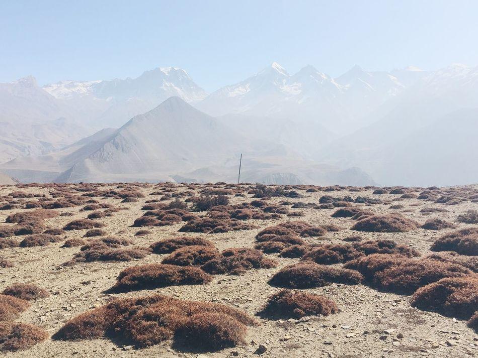Beautiful stock photos of annapurna, Annapurna Circuit, Annapurna Range, Beauty In Nature, Day