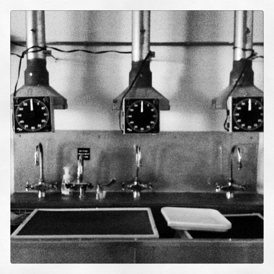 Photography Lab Photography Timers Lab UniversityOfNebraska time bnwalma blackandwhite printing