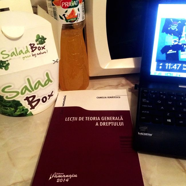 Studying Salad Healthy Studyhard Orangejuice Lawschool Criminology TGD The General Theory Of Law First Eyeem Photo