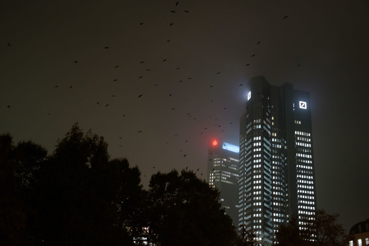 Deutsche Bank Birds City Crash Crisis Deutsche Bank Finance Financial Crisis Flying Nature Night No People Outdoors Sky Storm Cloud Tree Vulture