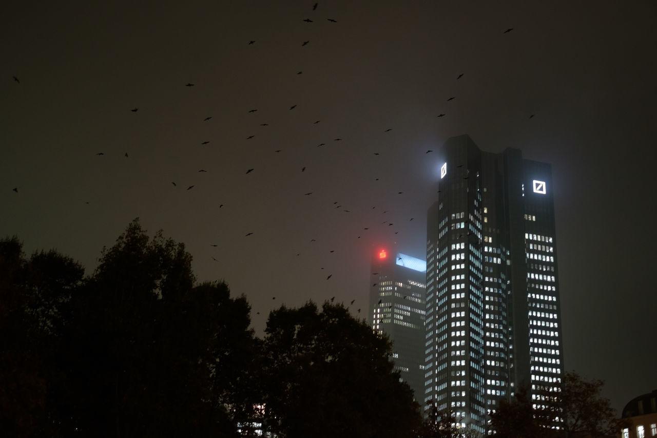 Deutsche Bank Birds City Crash Crisis Deutsche Bank Finance Financial Crisis Flying Nature Night No People Outdoors Sky Storm Cloud Tree Vulture