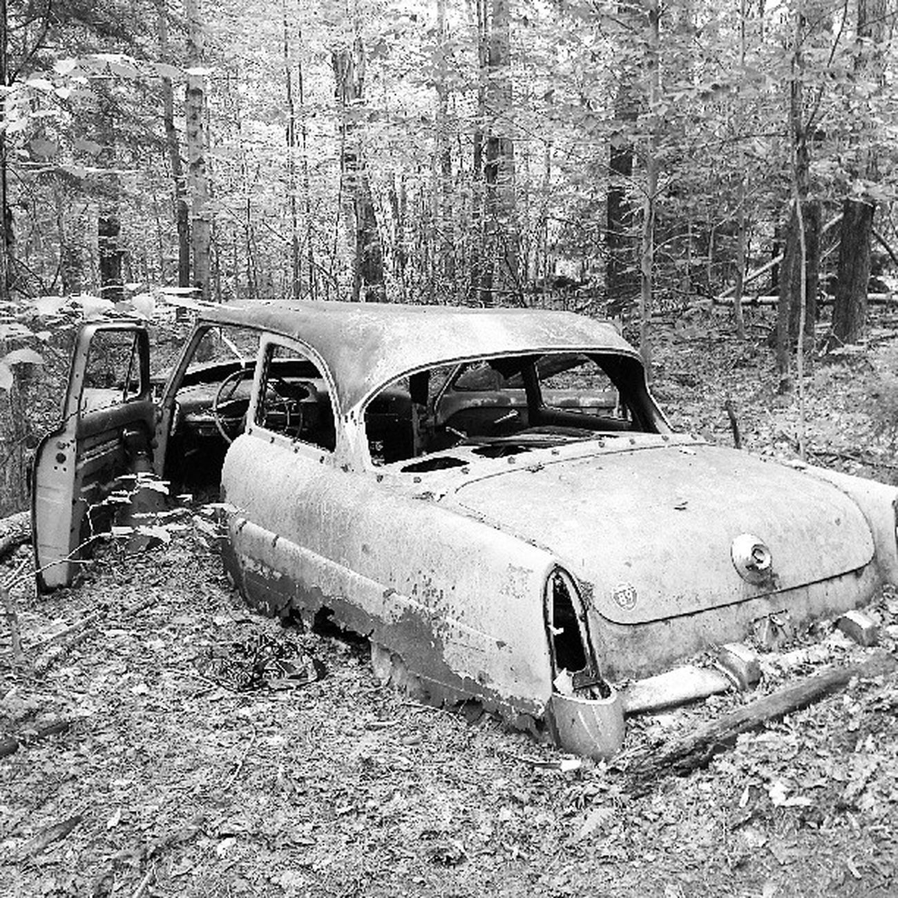 Now where did I park the car, again? Mobbsfarm Jericho Hiking Trail vtphoto igvermont blackandwhite weirdstuffyoufindontrails