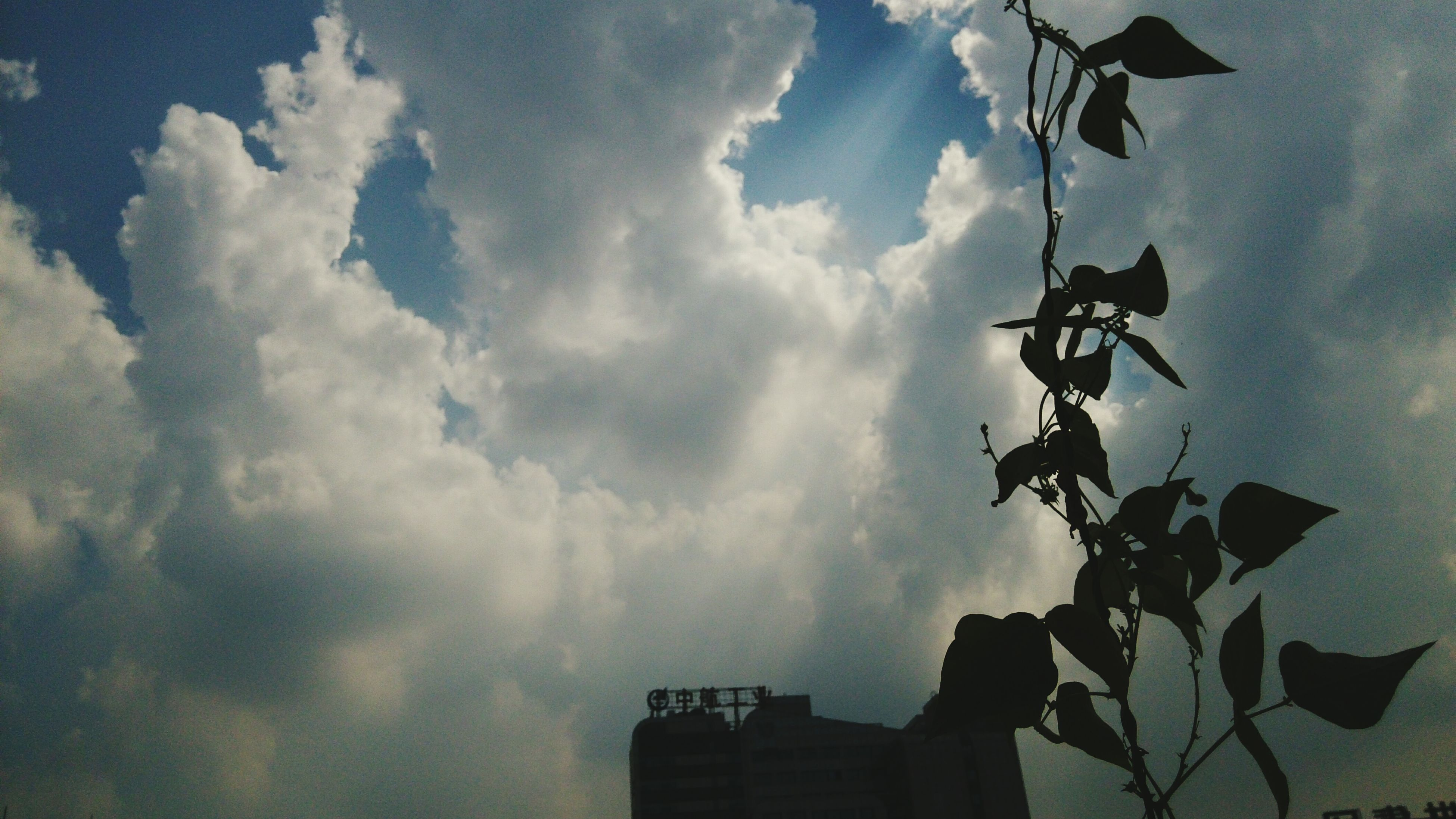 low angle view, sky, silhouette, cloud - sky, cloudy, cloud, built structure, building exterior, day, nature, outdoors, architecture, dusk, no people, weather, overcast, high section, beauty in nature, outline, building