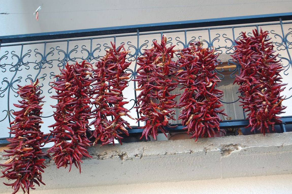 Day Dry Paprika Freshness Leaf Nature No People Outdoors Paprika Plant Red