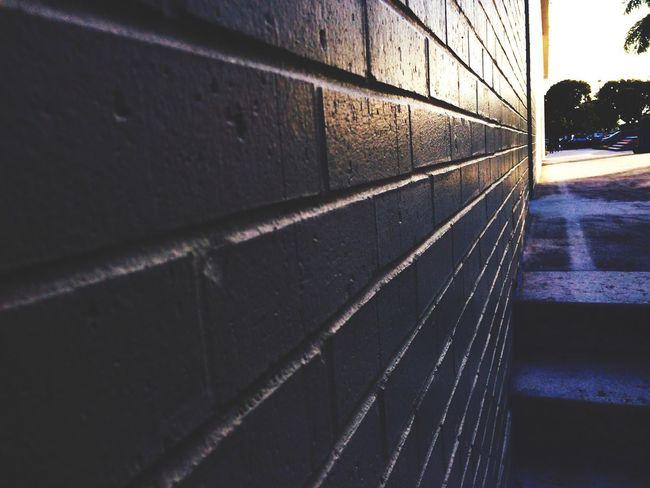 High School Bricks Sun Hitting Walls Morning Light Focus Hipster