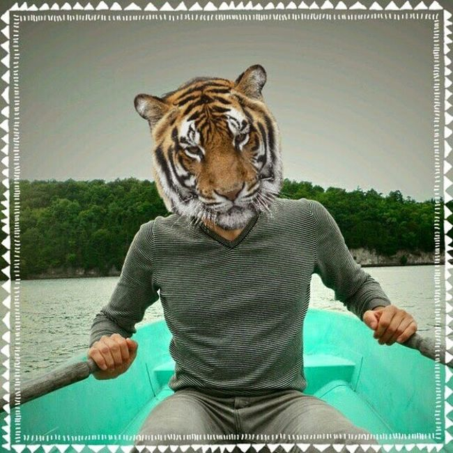 Because why not. Funwithheads Tiger Rowboat Vermont lake