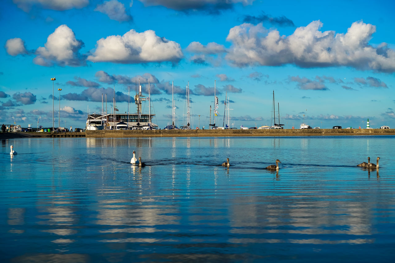 Nida #birds #lithuania #Nida #reflection Cloud - Sky Day Harbor No People Outdoors Sky Water