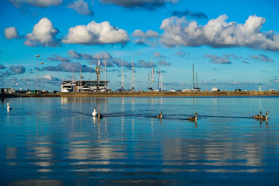 Nida #birds #lithuania #Nida #reflection Cloud - Sky Day Harbor No People Outdoors Sky Water