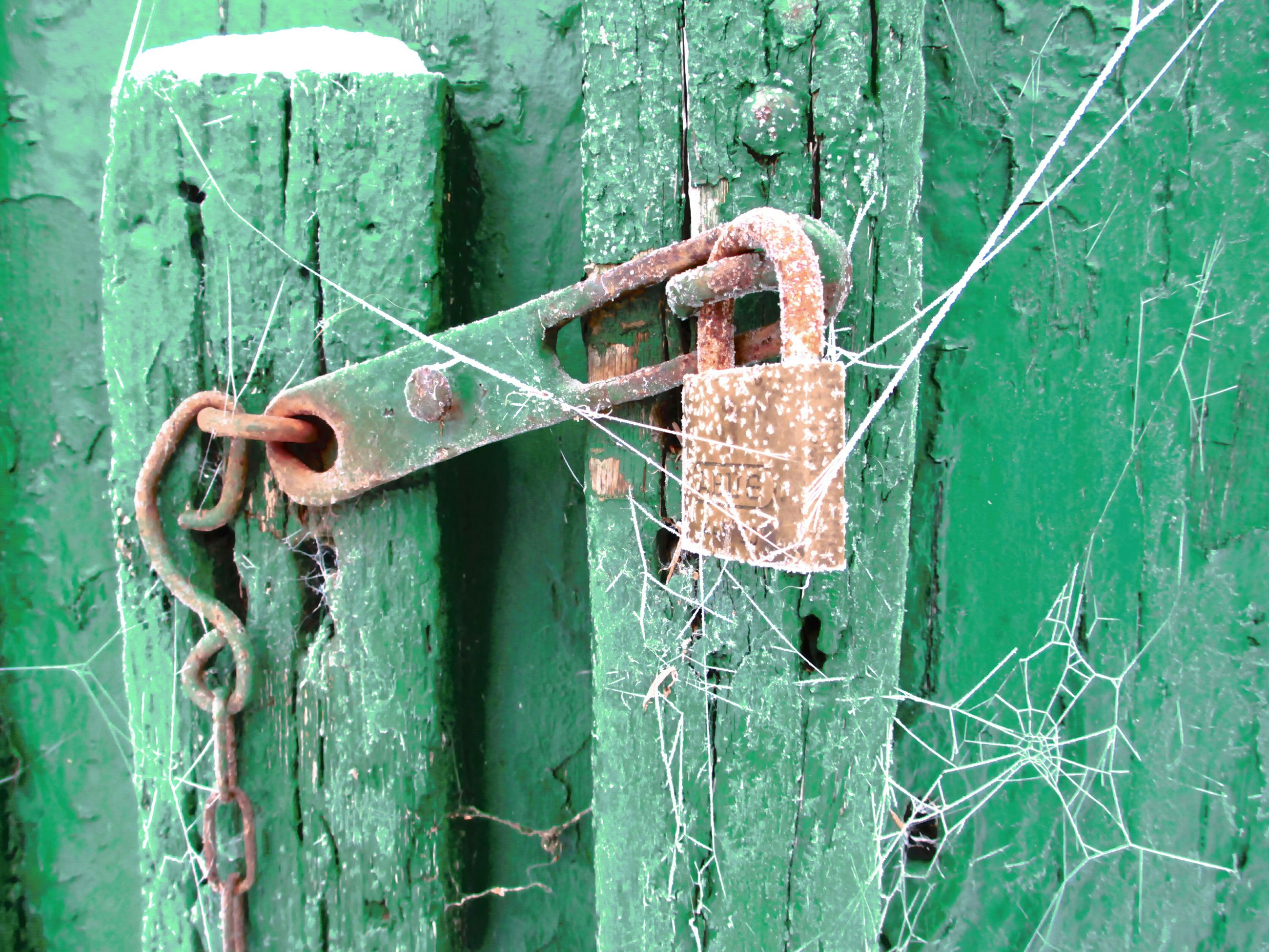 rusty, metal, old, security, deterioration, weathered, obsolete, run-down, close-up, safety, protection, metallic, damaged, padlock, lock, abandoned, door, green color, day, bad condition