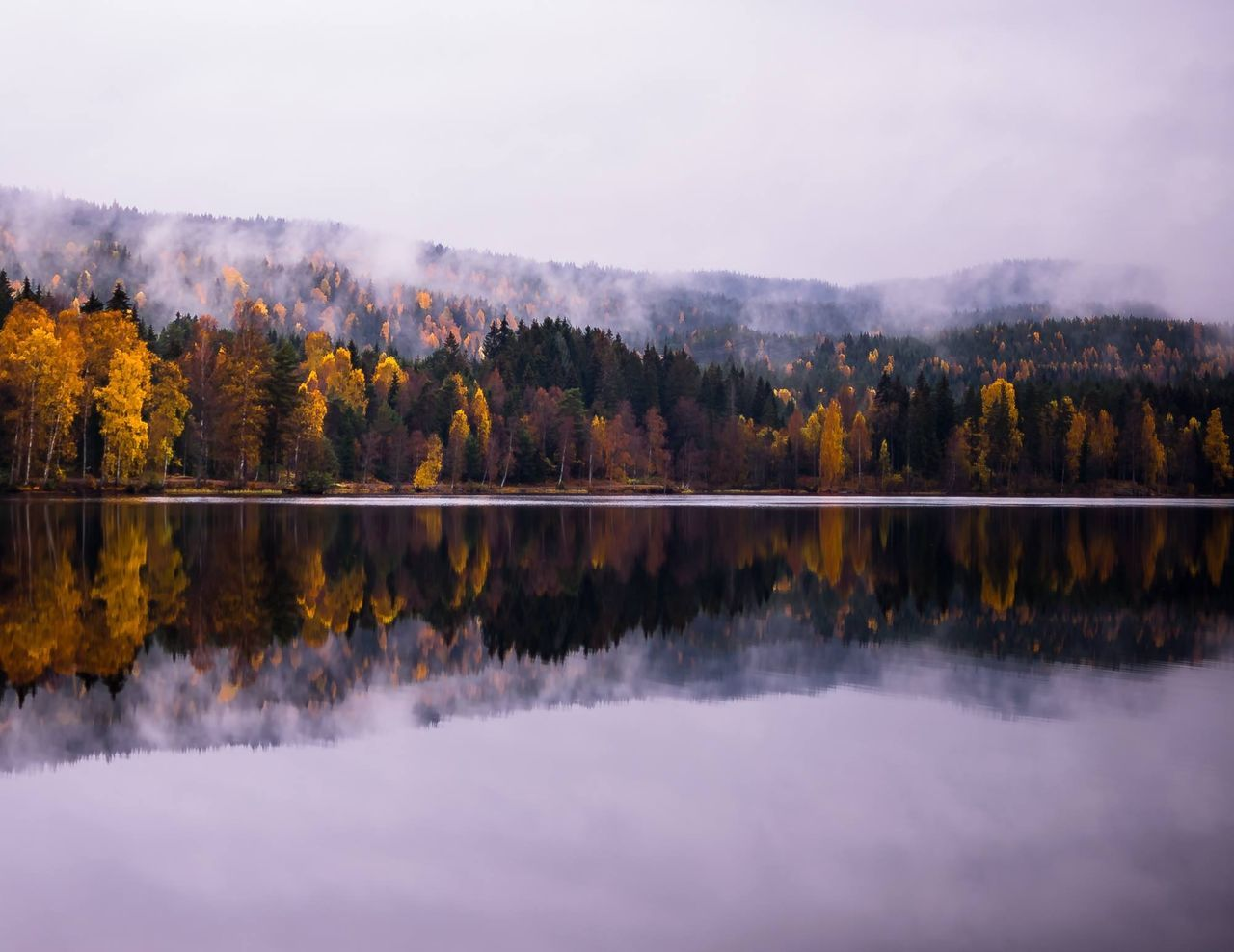 Beautiful stock photos of europe, Autumn, Beauty In Nature, Calm, Change