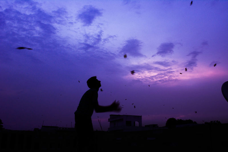 Set them free. Bird Birds Childhood Day Flying Leisure Activity Lifestyles Men Nature Outdoors People Real People Silhouette Sky Standing Sunset