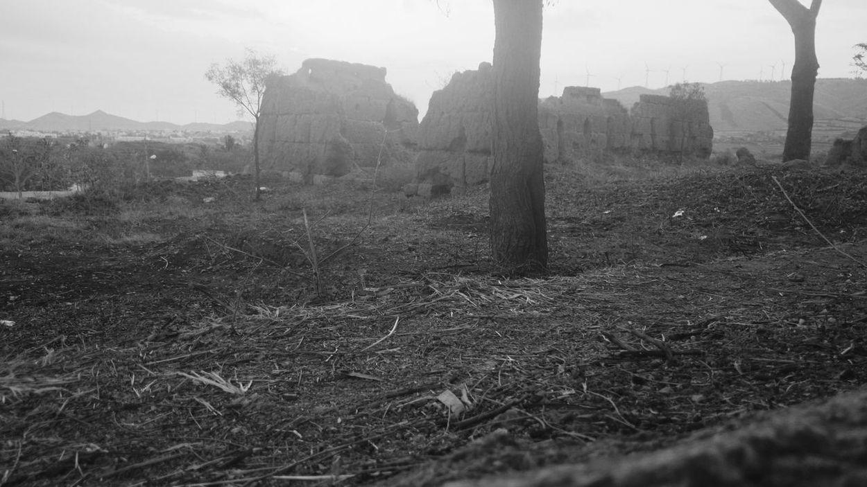 Melancholic Landscapes Melancholia Black & White Z1photography