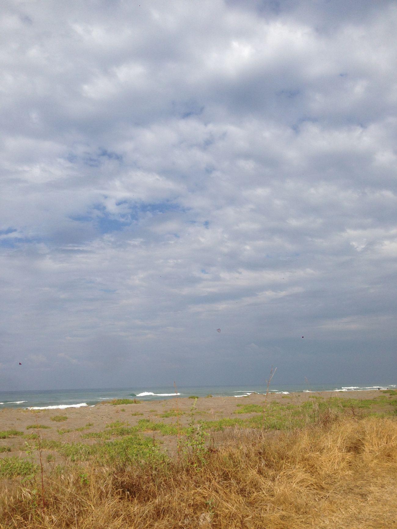 Sakarya Kocaali Manzara Deniz Doğa Like Sahil