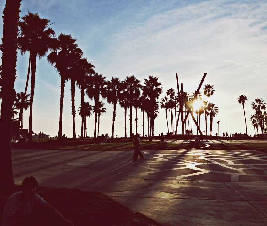 Enjoying The Sun at Venice Beach . Look at the way the Sun is shining on the Palm Trees ✌️???