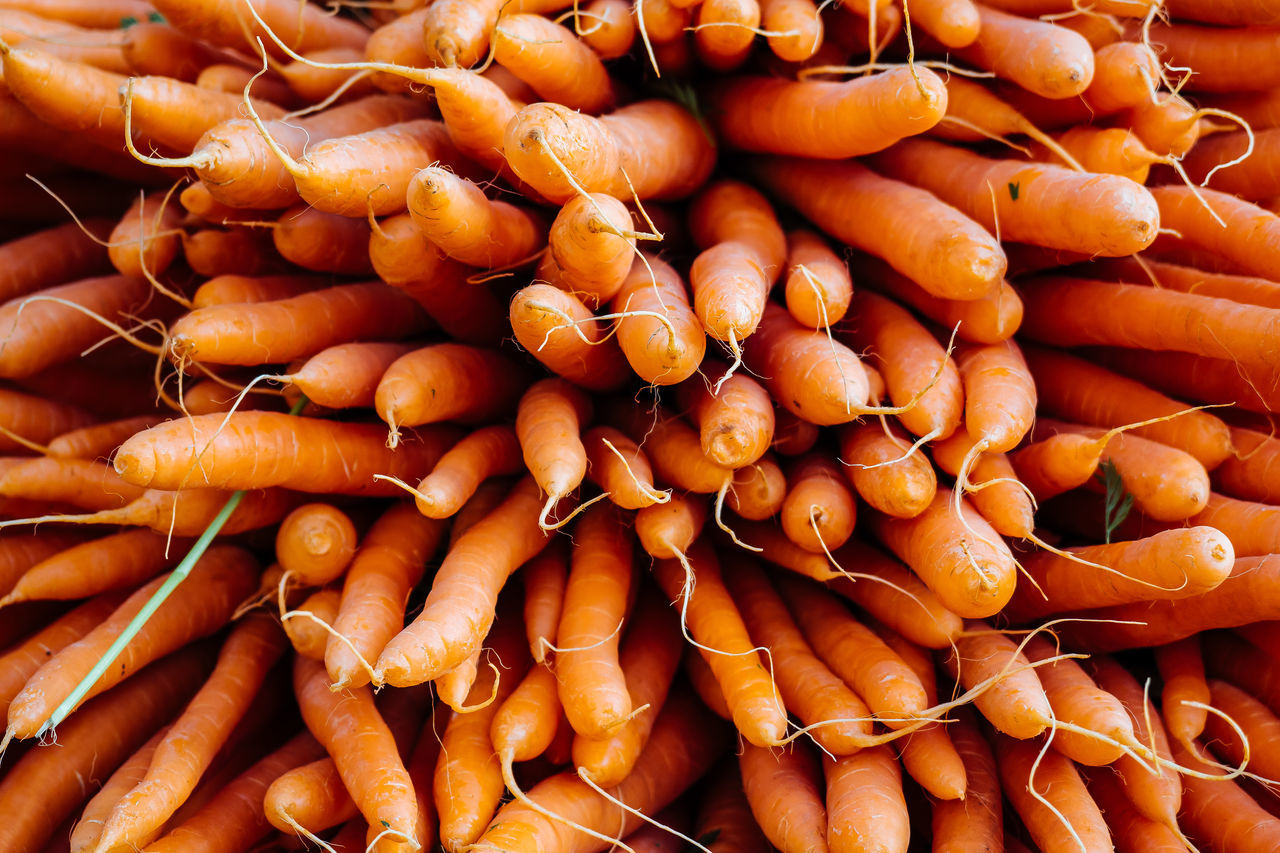 fresh from the market Abundance Backgrounds Carrots Close-up Day Farmer Market Food Food And Drink For Sale Freshness Full Frame Healthy Eating Large Group Of Objects Market Market Stall No People Orange Color Retail  Vegetable