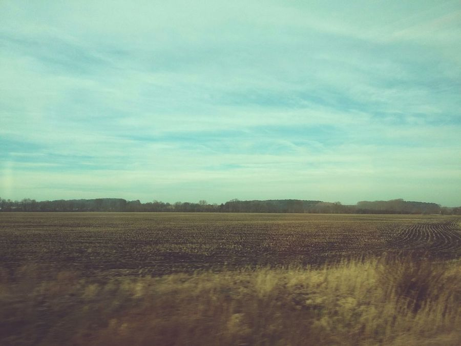 Tinted Landscape. · Germany Train Ride Train Tinted Windows Nature Looking Out The Window Looking Out Fields Trees Clouds And Sky Serenity