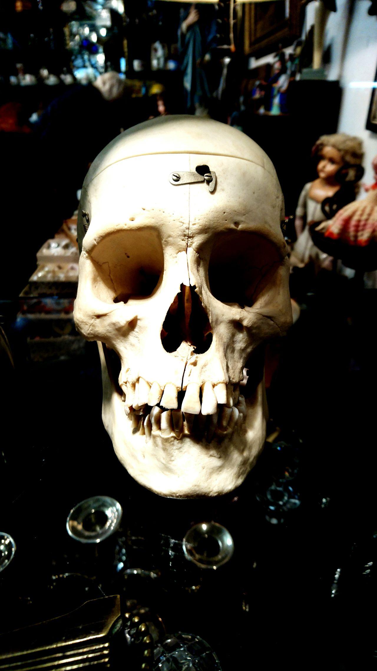 Fleemarket Close-up Human Body Part Human Skeleton Anthropomorphic Face Human Skull People Outdoors Talking Pictures Taking Photos Taking Pictures