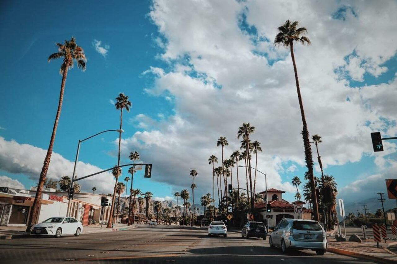Beautiful stock photos of los angeles, transportation, car, land vehicle, palm tree