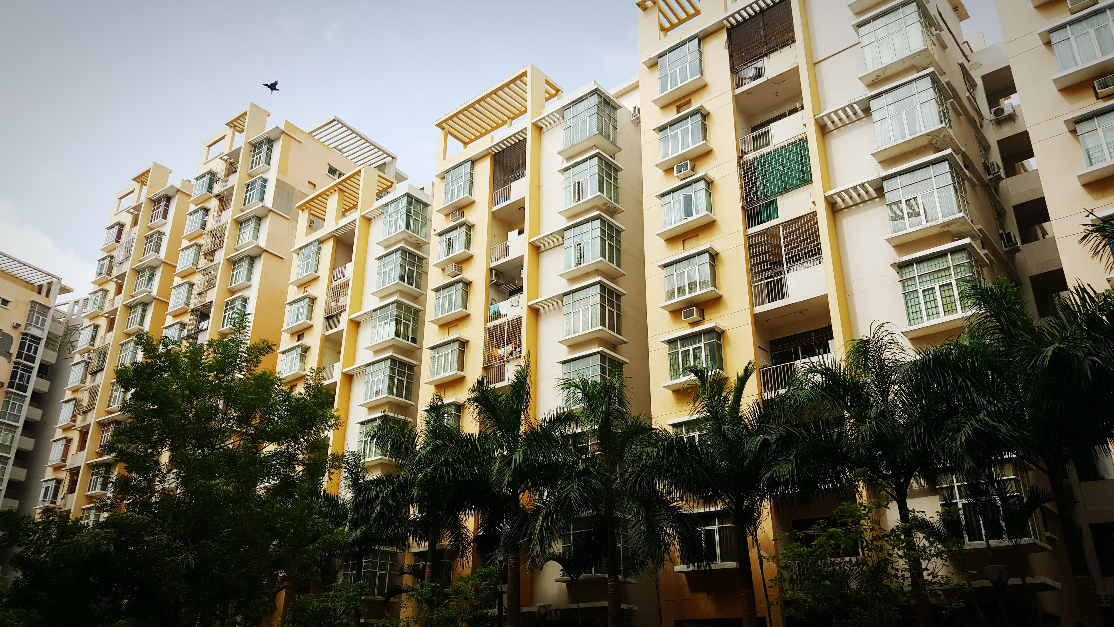 building exterior, architecture, built structure, low angle view, residential building, building, city, window, residential structure, tree, sky, apartment, growth, clear sky, day, outdoors, no people, city life, house, balcony