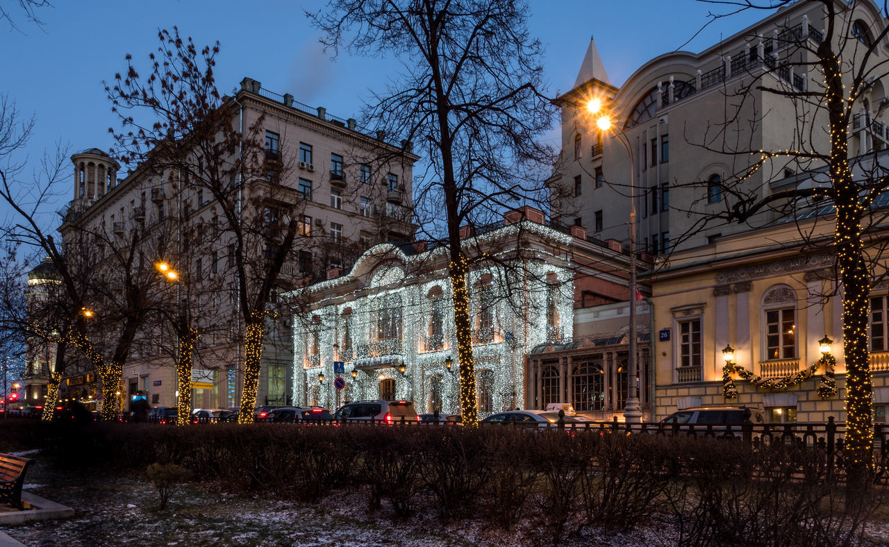 building exterior, architecture, built structure, illuminated, night, bare tree, tree, outdoors, street light, winter, snow, no people, cold temperature, sky, branch, city, nature