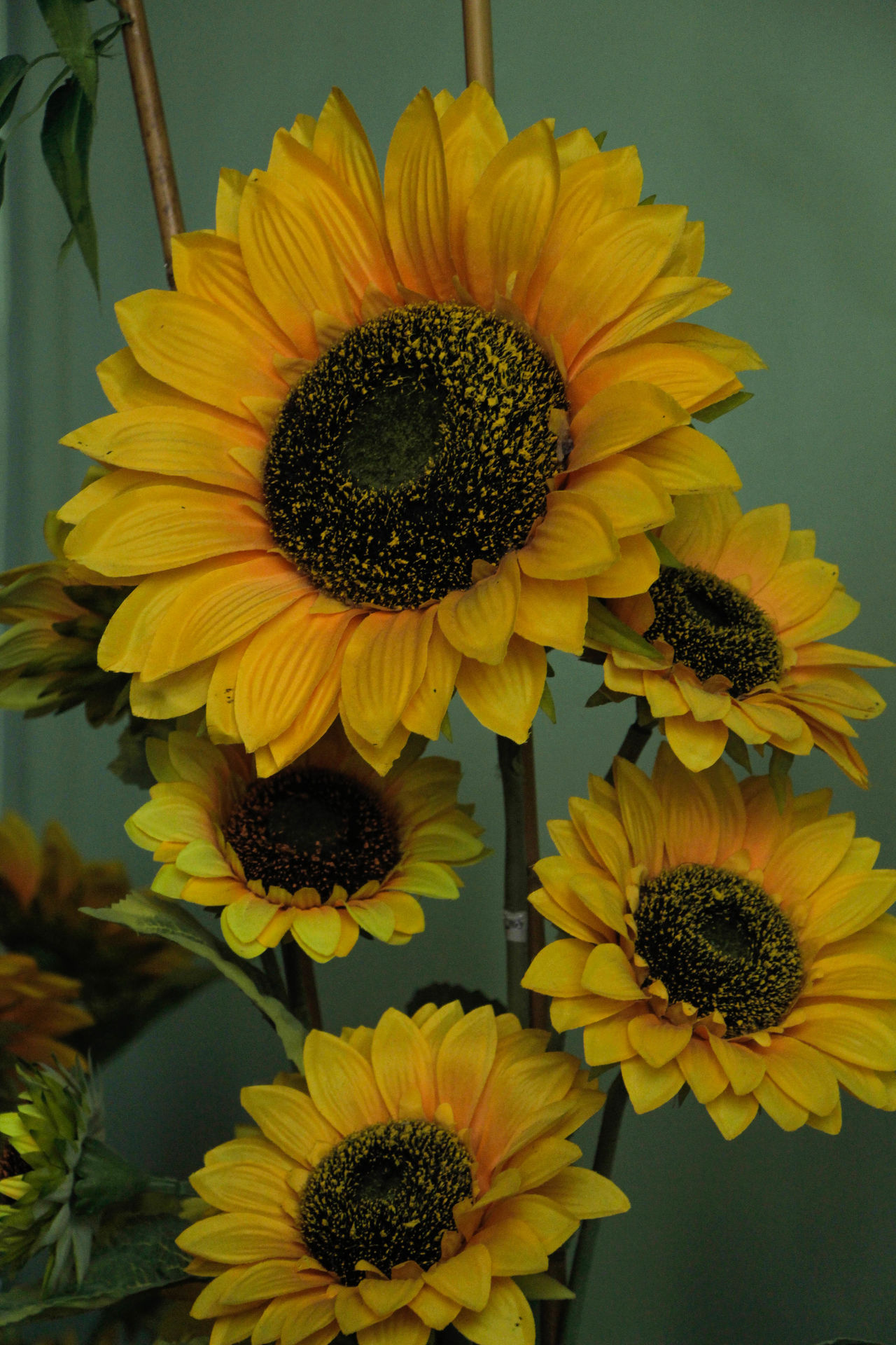 Artificial Artificial Flower Beauty In Nature Blooming Close-up Fake Flower Freshness Plant Sunflower Yellow