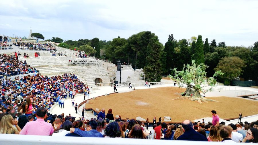 Large Group Of People People Crowd Tree Leisure Activity Real People Day Sky Outdoors Mammal Adult Nature Adults Only Greek Theater Operahouse Openspace Evening Art Arts Culture And Entertainment Colors White Syracuse  Sicily Italy