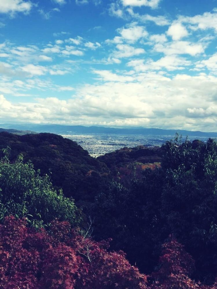 Last Year Pic 朝護孫子寺 奈良 秋 Autumn Landscape Sky And Clouds Ilovenature Mountains