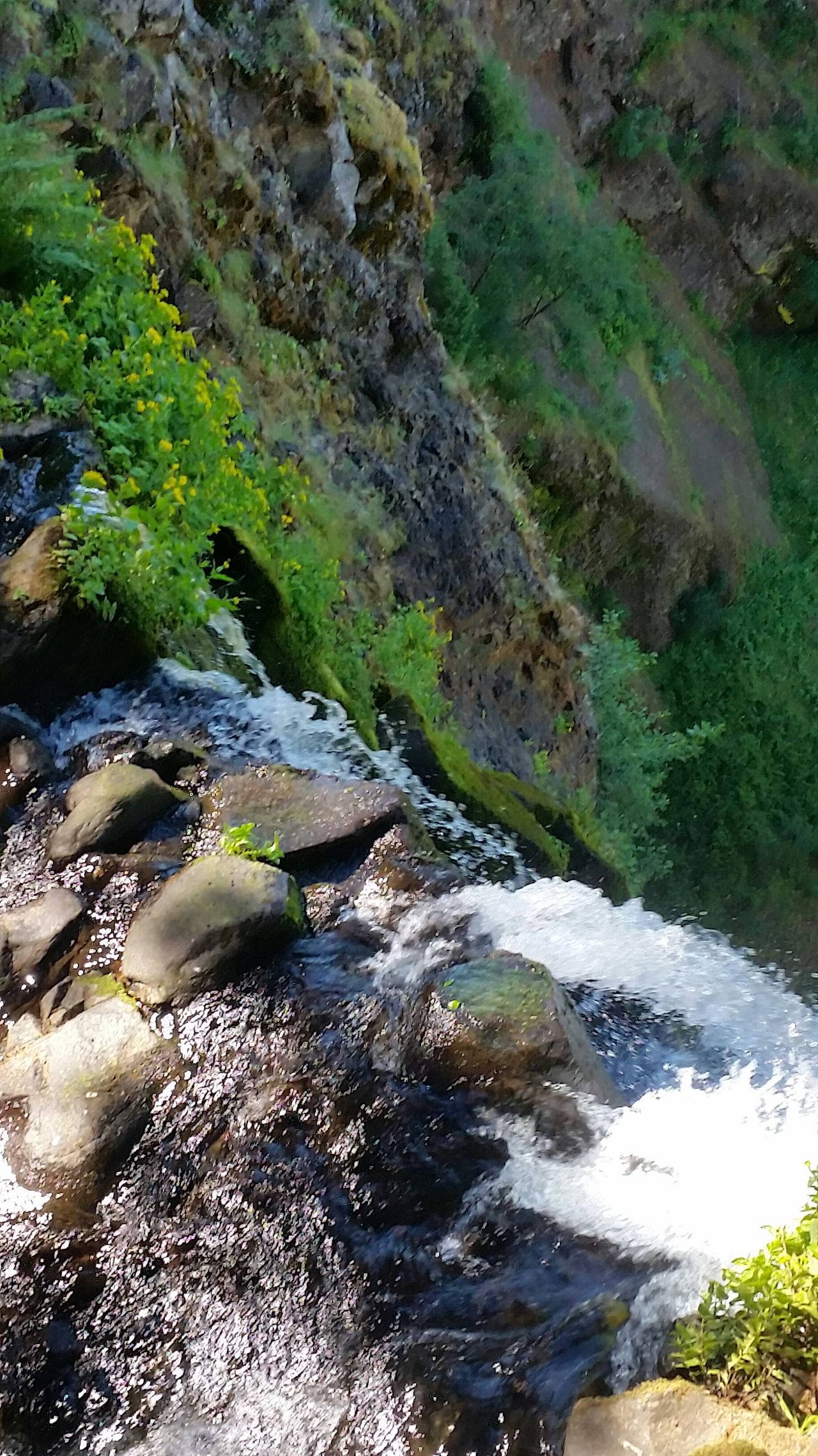 Multnomah Falls  MultnomahFalls Multnomah Waterfall 600feet Hike Nature Oregon Hood River Hoodriver