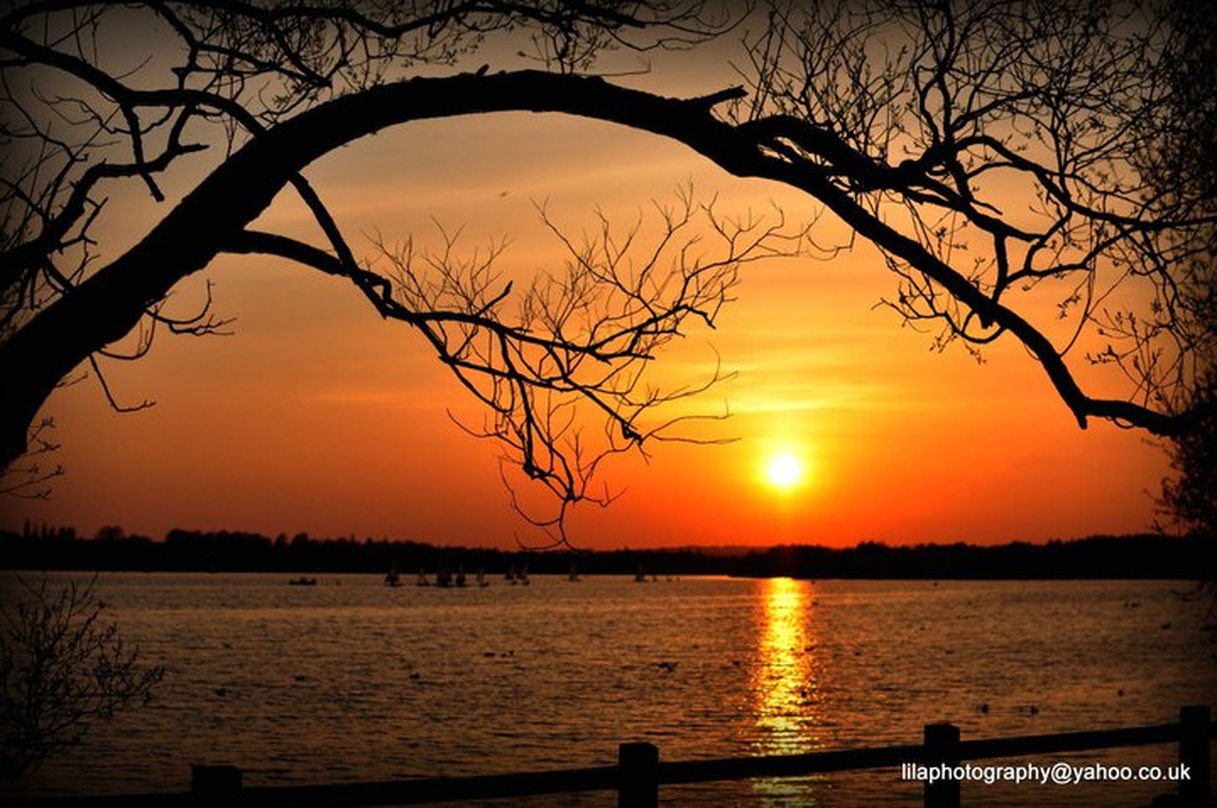sunset, silhouette, water, bare tree, tranquility, scenics, tranquil scene, tree, branch, beauty in nature, lake, nature, sky, orange color, sun, idyllic, reflection, river, outdoors, tree trunk