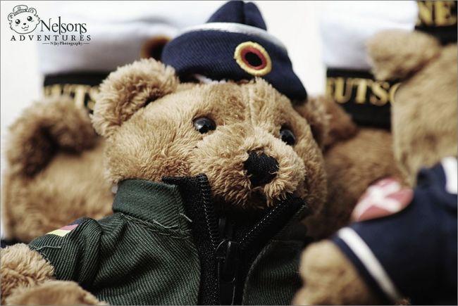 Major Tom EyeEm Best Edits NelsonsAdventures Taking Photos Teddy