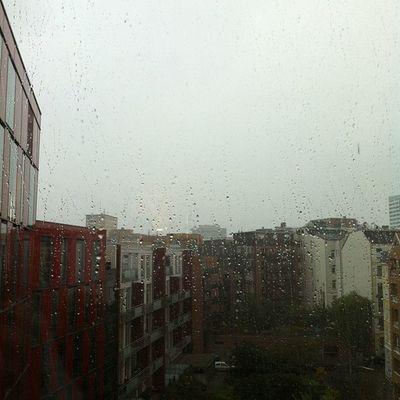 In Hamburg ist das Wetter endlich wieder normal.
