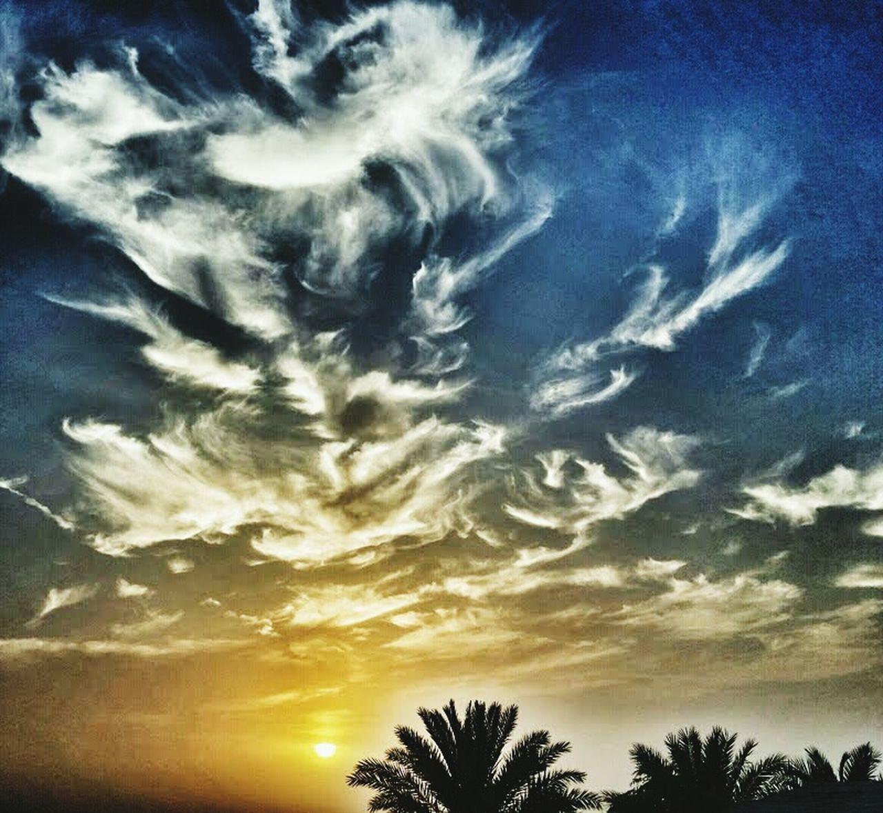 Cloud - Sky Sky Scenics Dramatic Sky Silhouette Cirrus Tree Beauty In Nature Sunset Dubai Desert Travel Palm Tree Palm Tree Silhouette Sunset Sunset Silhouettes Outdoors Clouds & Sky Welcome To Black EyeEmNewHere The Great Outdoors - 2017 EyeEm Awards