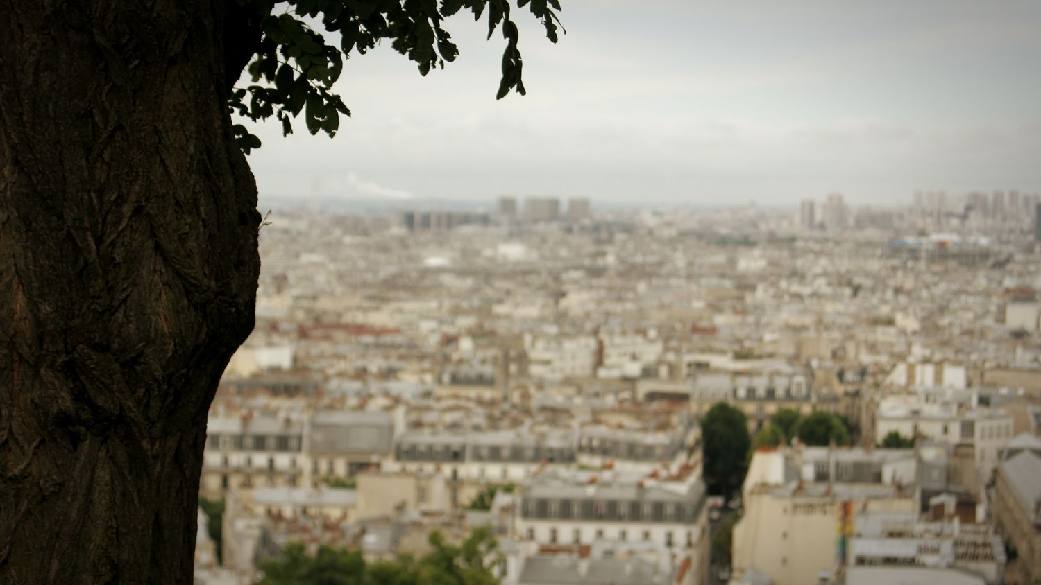 Another old photo. This time from a trip to Paris. Old Photo Forgot About This Picture Paris Skyline