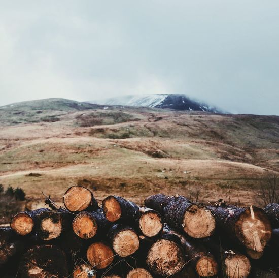 Sky Mountain Nature Outdoors No People Landscape Scenics Day Beauty In Nature Freshness Logs Pile Brecon Beacons National Park Wales UK Forest