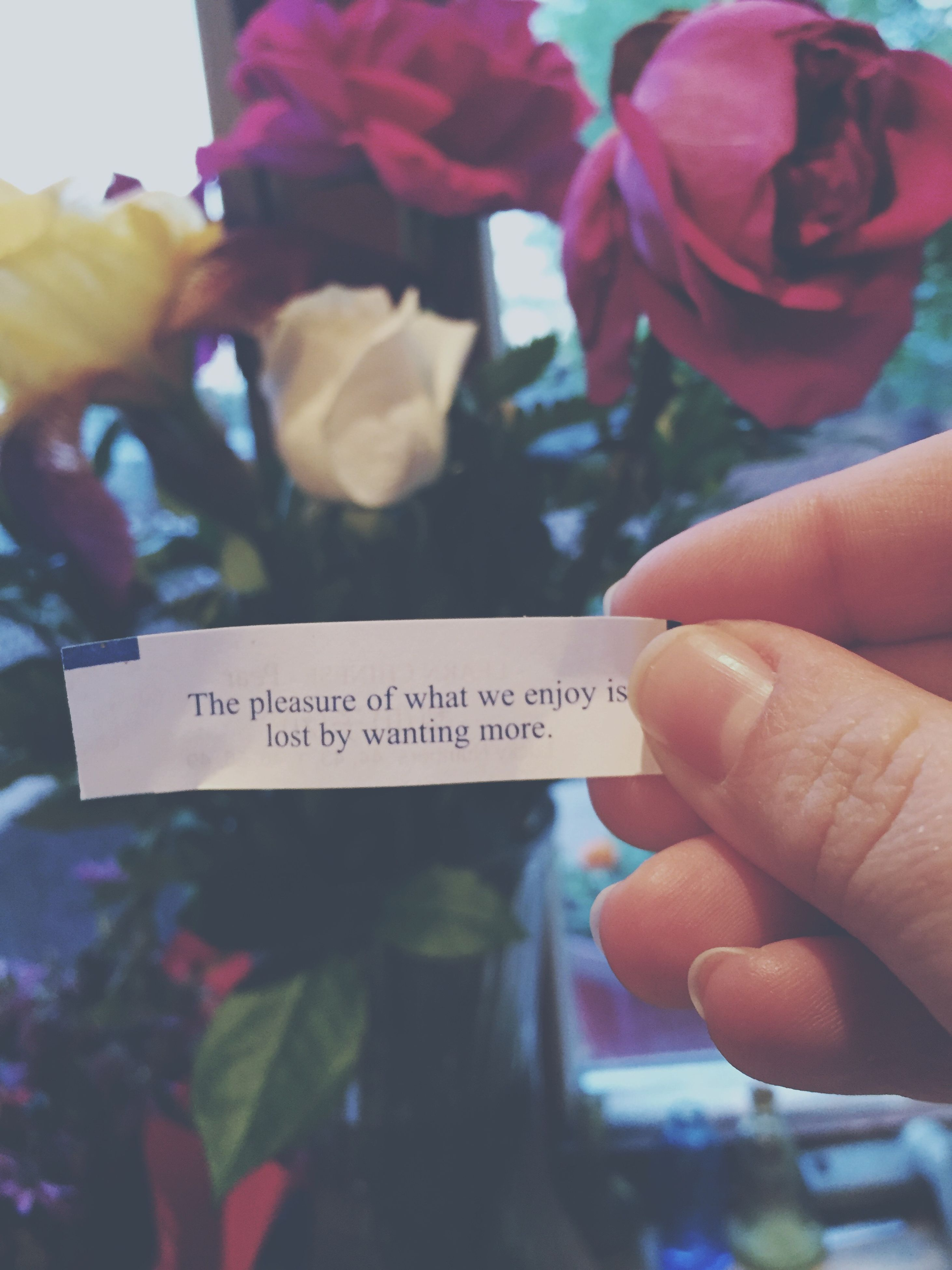 person, holding, part of, cropped, human finger, text, communication, close-up, focus on foreground, flower, western script, indoors, paper, freshness, unrecognizable person, lifestyles, book