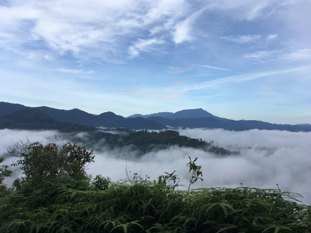 Mountain Nature Tranquility Scenics Tree Beauty In Nature Landscape Tranquil Scene Sky Outdoors Mountain Range Growth Water No People Day Cloud - Sky Tourist Pahang, Malaysia Malaysia Sungai Lembing Leisure Activity Misty Morning